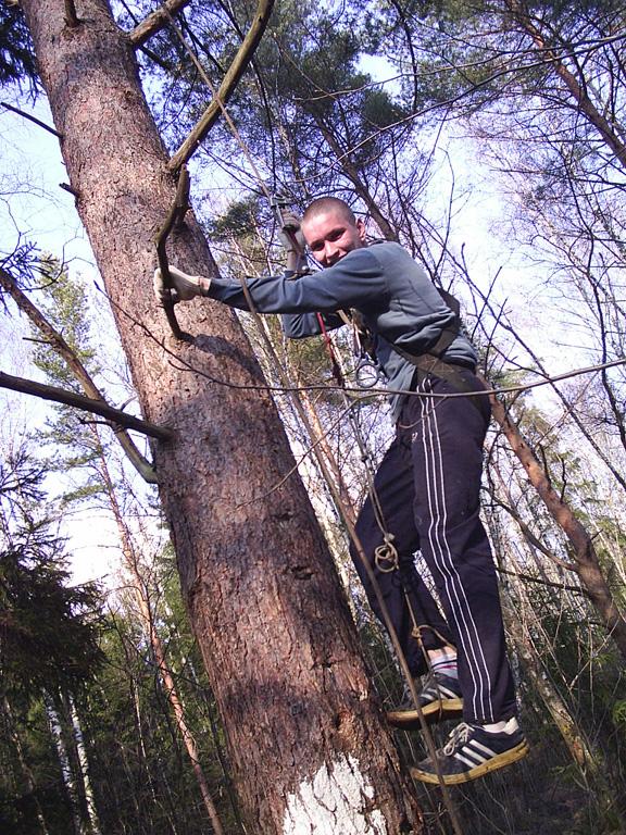 Аркадий Маликов поднимается на дерево на жумаре 2004 г.