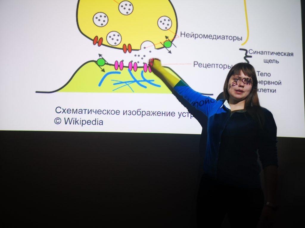 Полина Кривых